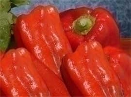 Pimiento rojo para asar, 2 kilos