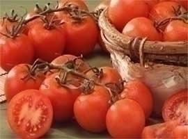 Tomate de rama, 2 kilos