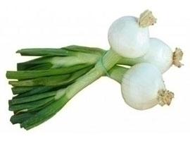 Cebolleta fresca, 2 manojos